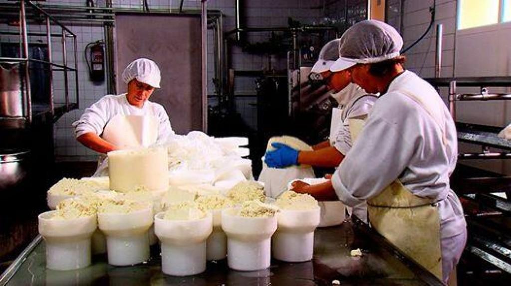 fabricación de queixo