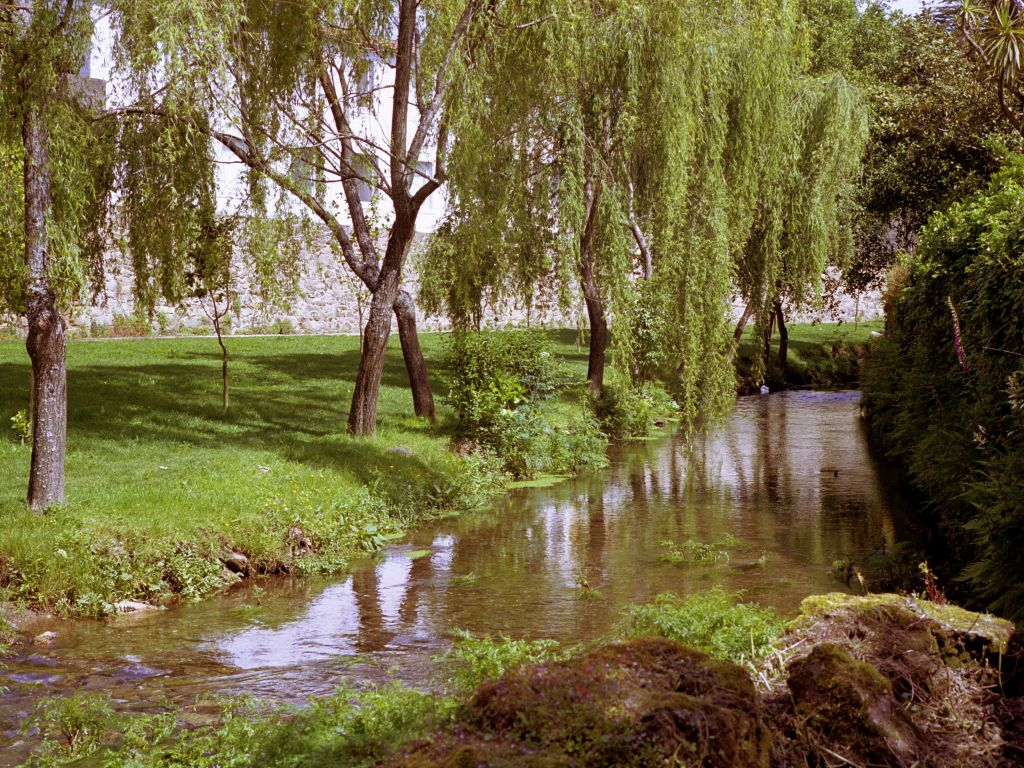 Parque de galeras parques y jardines web oficial de for Parques y jardines