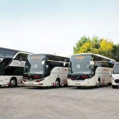 autobuses-minibuses