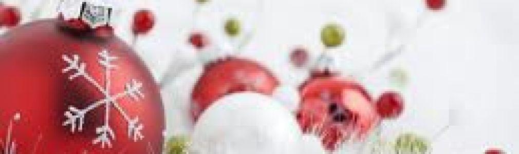 Programa 'Vive la Navidad' Noviembre