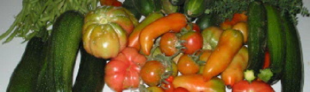 Charla sobre dinamización del sector hortofrutícola