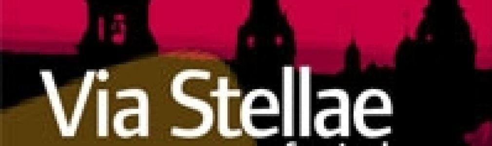 VI Festival de Música Via Stellae