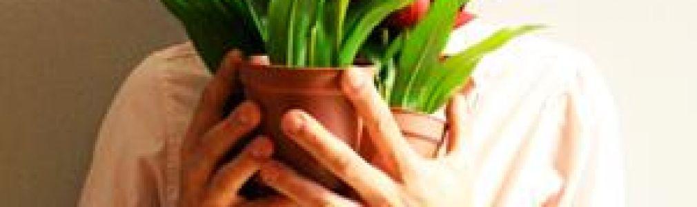 Ciclo 'Teatro & Danza': 'Tulipanes'