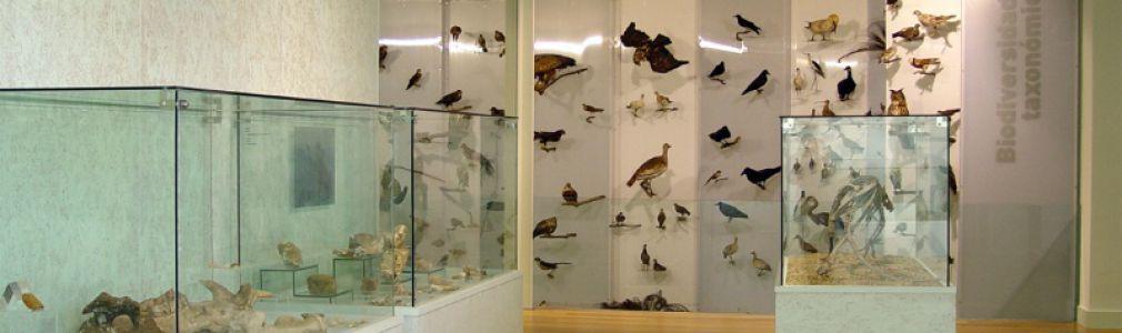 Jornadas de Puertas Abiertas en el Museo de Historia Natural de la USC