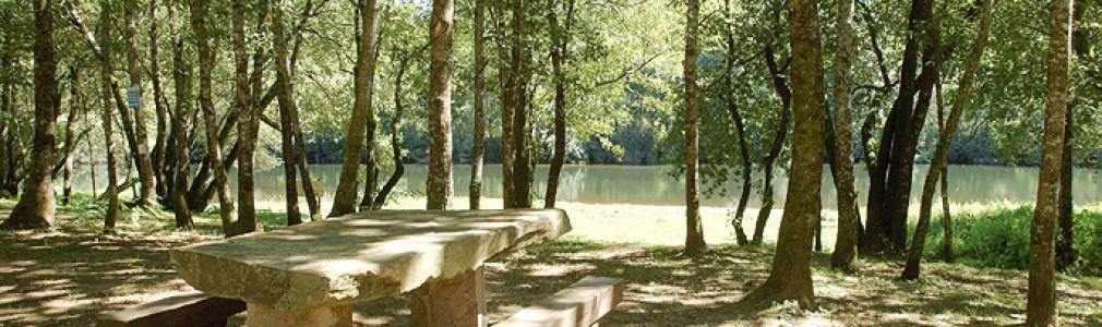 Área de Recreo de Agronovo