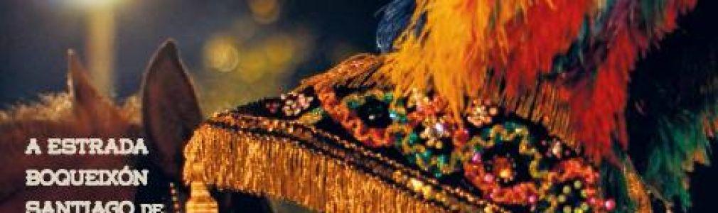 Xenerais da Ulla 2014: Carnaval Municipal de Vedra