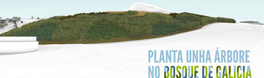 'Planta un árbol en el Bosque de Galicia'