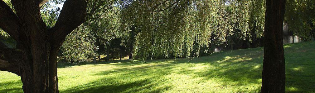 Fermín Bouza Brey Park and Alexandre Bóveda Park