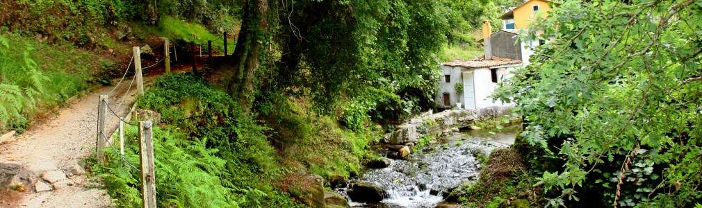 Paseo fluvial del río Sarela