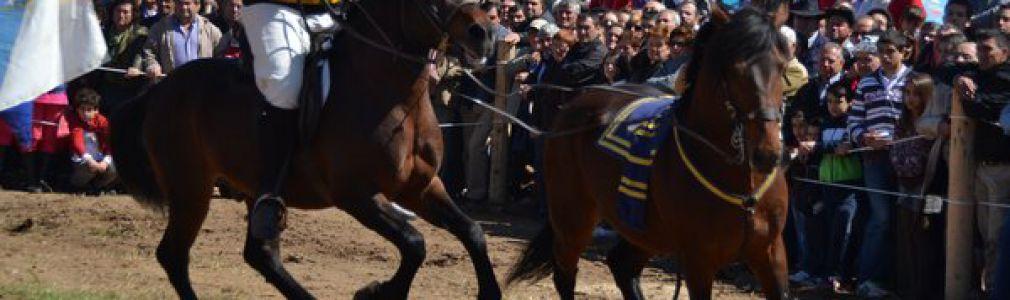 Ascensión 2015: Feria Caballar