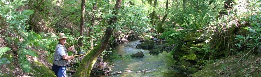 River fishing license in Galicia