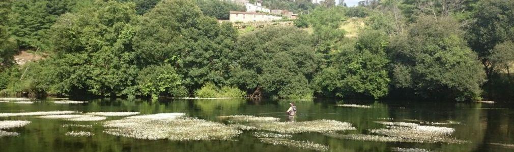 Fishing in the Ulla-Deza River System