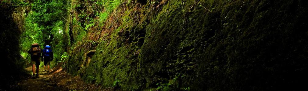 Hiking Trails in Área Santiago