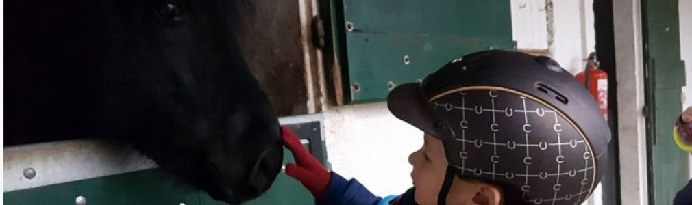 Musical Horse Riding: Open Day