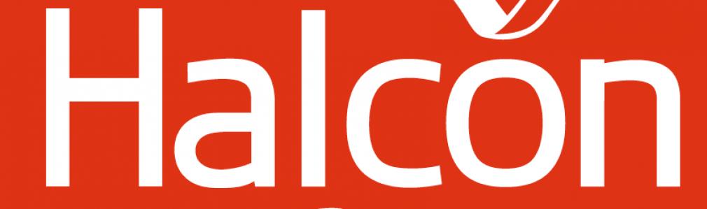 Halcón - Carreira do Conde