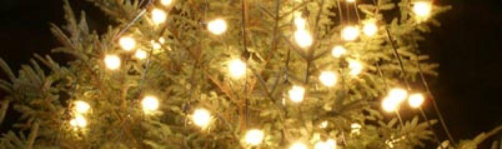 Programa 'Vive la Navidad': 22 de diciembre