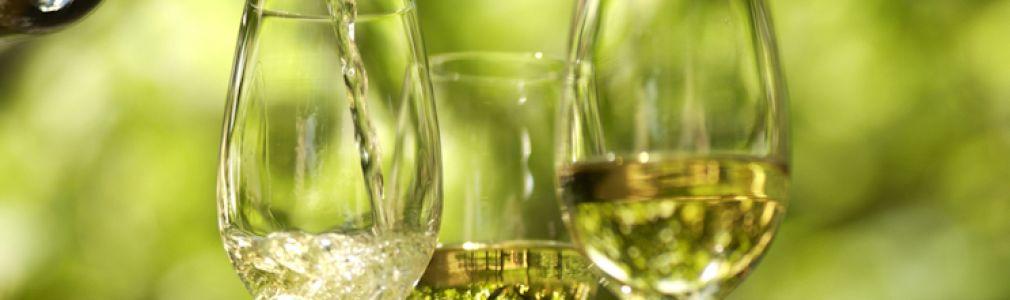 Cata de vinos alemanes