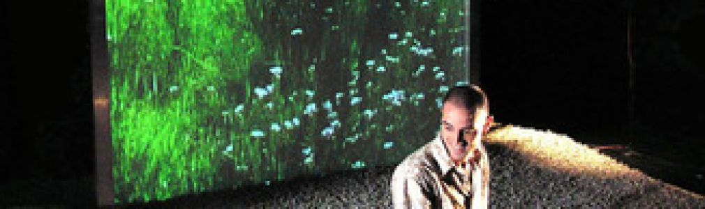 Ciclo 'Brinca Gaiás': 'En el jardín'
