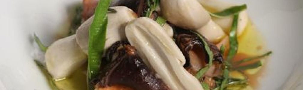 Gastronomy Workshop: Cooking mushrooms with... Miguel Silvarredonda