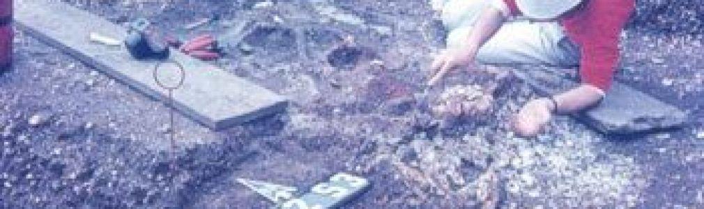 'O valor da arqueoloxia'