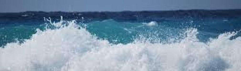 Carlos Alonso: 'Un mar... 50 miradas'