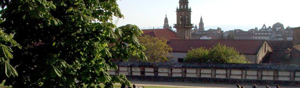 San Domingos de Bonaval Park