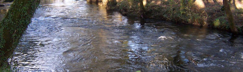River Tambre (Oroso) free angling area