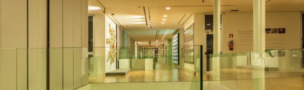 Museo Historia Natural 5