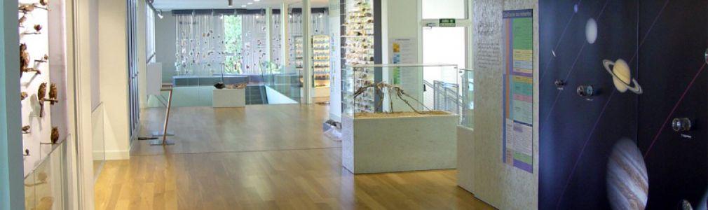 Museo Historia Natural 7