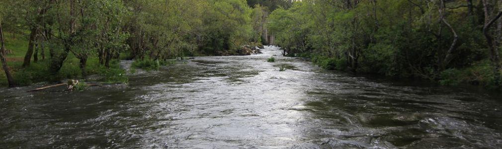 Playa fluvial de O Abeseiro de Toiriz 2