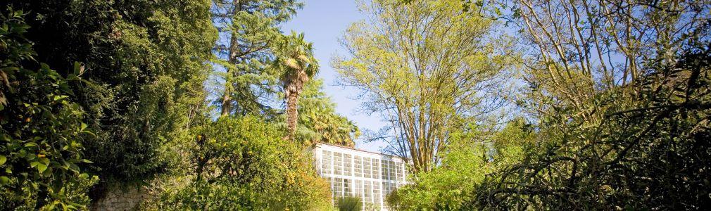 Jardín del Pazo de Santa Cruz de Ribadulla 7