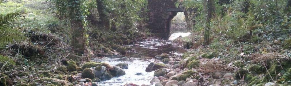 Rego do Piñeiro (Rego dos Muíños de Buxán) free angling area
