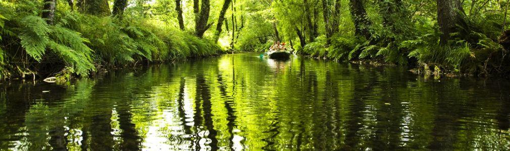 River Baleirón (or Liñares) free angling area