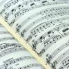 Ciclo 'Música no Camiño': Ensemble BMA