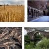 'Atalantar. De la cultura rural al desarrollo sostenible'