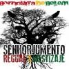 'Noches Reggae'