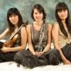 Ciclo 'Música de Cámara': Pamina Trío