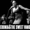 Ciclo 'Compostela Rock': Freedonia & The Sweet Vandals