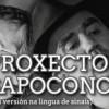 Concierto de Proxecto Sapoconcho