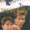 Ciclo de cine 'Nos vieiros da mente': 'Birdy'
