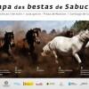 'A rapa das bestas de Sabucedo'