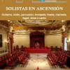 'Solistas en Ascensión 2014'