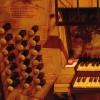 Concierto de órgano en la Catedral