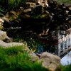 Jardín del Pazo de Faramello 4