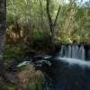 Senda fluvial botánica del río Mera 3