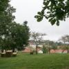 Visitas guiadas al nuevo Parque de la Finca do Espiño