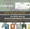 Jornadas sobre la situación de la Vespa Velutina en Galicia