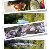 Servicios Guías/Acompañantes de Pesca Área Santiago
