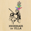 Los Xenerais da Ulla participan en el desfile de entroidos gallegos