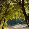 Parque del Lago